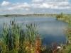 halifax lake - Bain Valley Fisheries