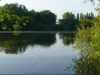 wellington lake - Bain Valley Fisheries